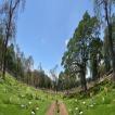 Panorámica Jardines Los Olivos
